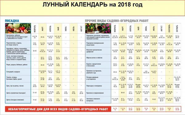 Календарь когда сеять рассаду в 2017 году 431