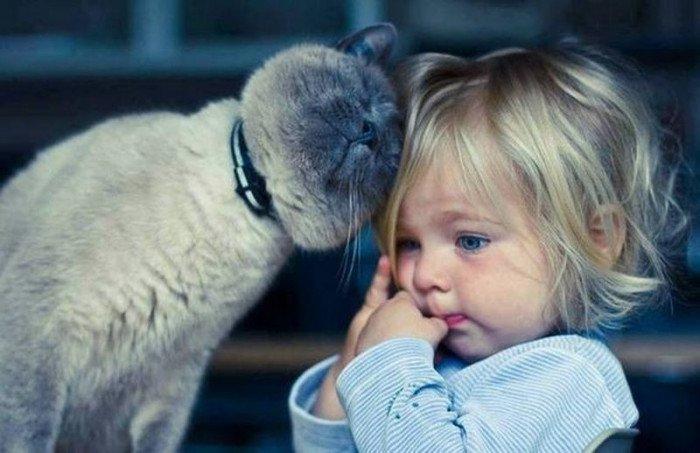 Какое животное купить ребенку