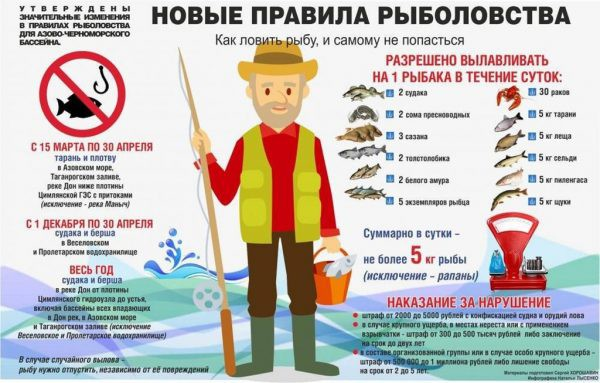 Нерестовый запрет 2018: можно ли ловить спиннинг
