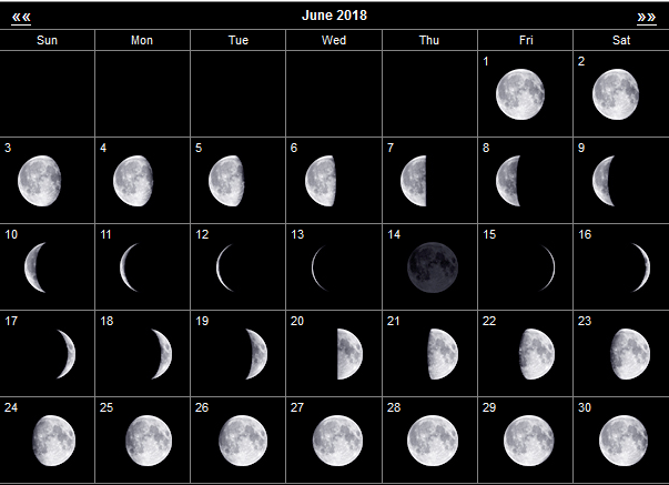 Лунный календарь огородника для Сибири: июнь 2018