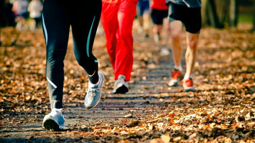 Идеально для похудения – бег от лишних килограммов