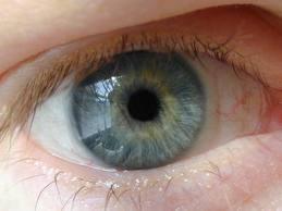 Как быстро избавиться от ячменя на глазу в домашних условиях
