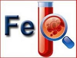 Лечение анемии (малокровия) народными средствами