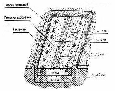 Как сделать грядки по Митлайдеру: все про узкие митлайдеровские грядки