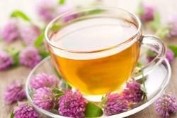 Целебные рецепты и средства в лечегнии паховой грыжи — Будьте Здоровы