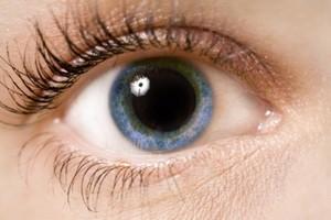 Всё о глазах — Страница 31 из 102