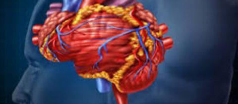 Народные Средства VS Атеросклероза Сосудов Головного Мозга