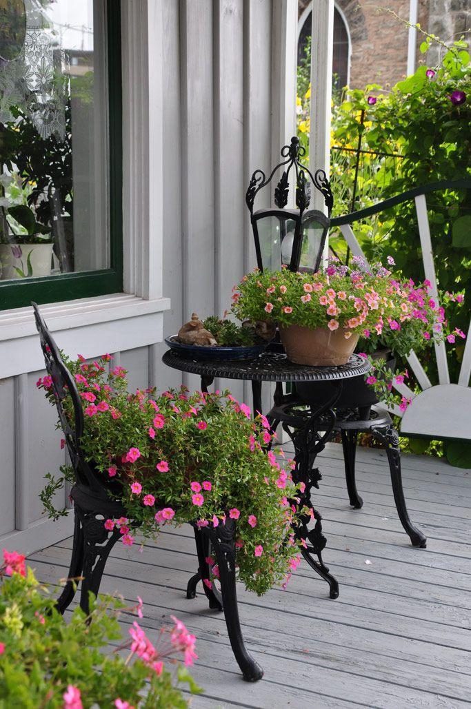 Дизайн дворовых клумб у дома