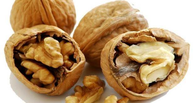 Грецкие орехи: полезные свойства плодов, листьев и скорлупы