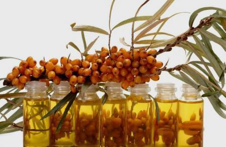 Облепиховое масло польза и вред в медицине и косметологии