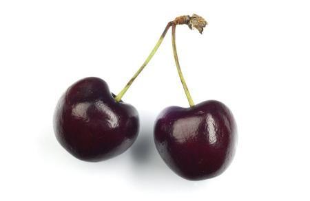 Вишня: фото и описание ягоды, состав, калорийность