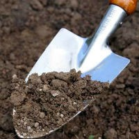 От чего зависит плодородие почвы, Osadovod — Все о садe, огороде и дизайне