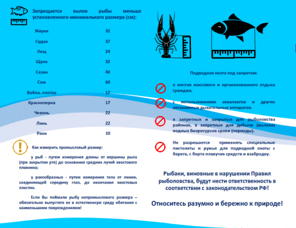 Ограничение на лов рыбы в 2019 году в петрозаводске