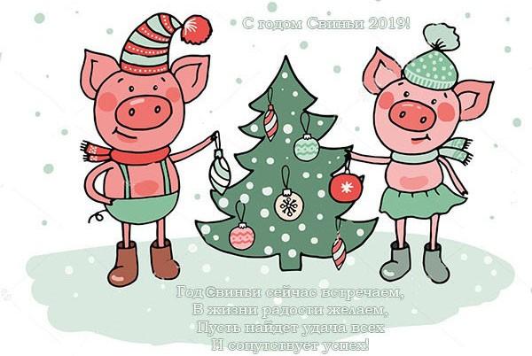 СМС с приколами с Новым 2019 годом Свиньи, смешные, другу, подруге, коллегам