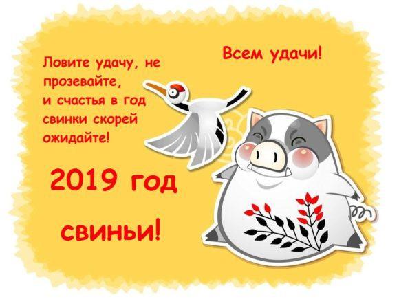 Красивые стихотворения — поздравления родных с Новым годом 2019 в стихах