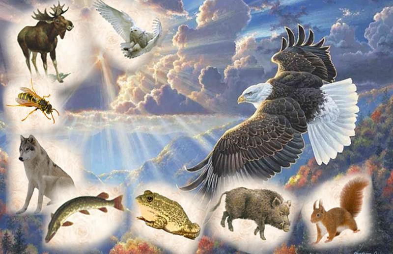 2019 год по славянскому календарю тотем — Парящий Орёл