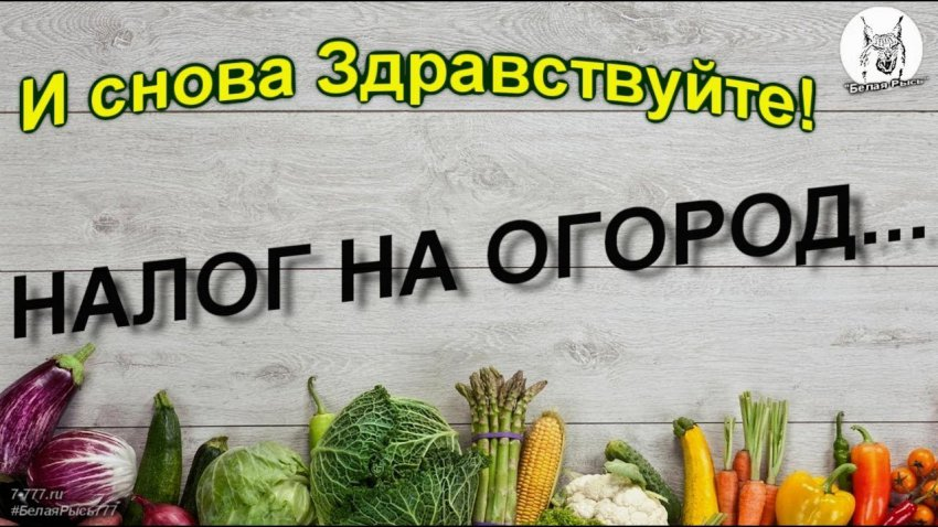 В РФ вступил в силу налог на огород