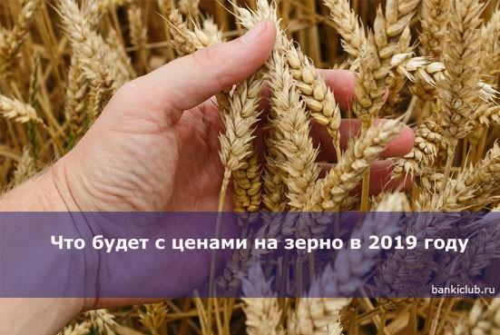 Что будет с ценами на зерно в 2019 году