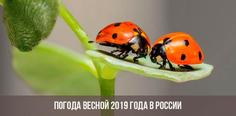Прогноз погоды на весну 2019 года в России