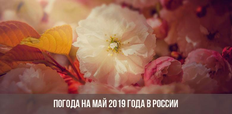 Погода на май 2019 года в России