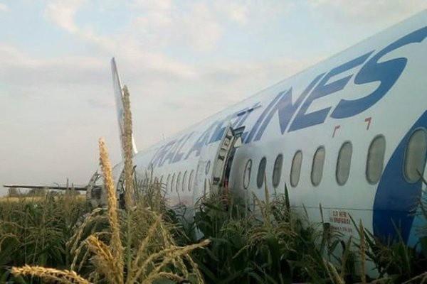Самолет, новости сегодня: разбился в Москве самолет с людьми