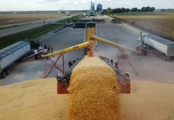 Росатом намерен выяснить, как защитить сельхозпродукцию с помощью радиации