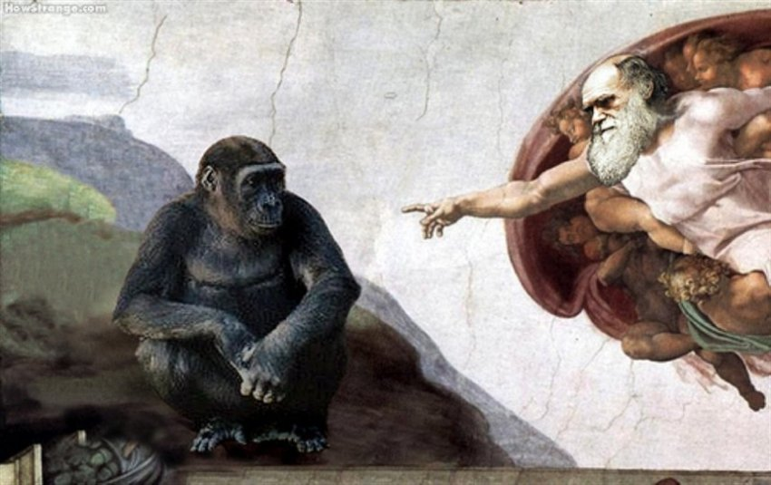 Смысл жизни: Новая гипотеза происхождения человечества
