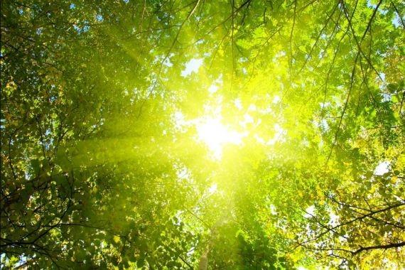 Врач дала 7 советов тем, кому не хватает солнца