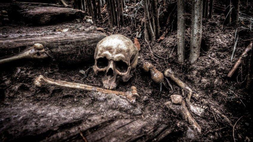 Ученые нашли останки людей IV-VII веков со сложными хирургическими вмешательствами