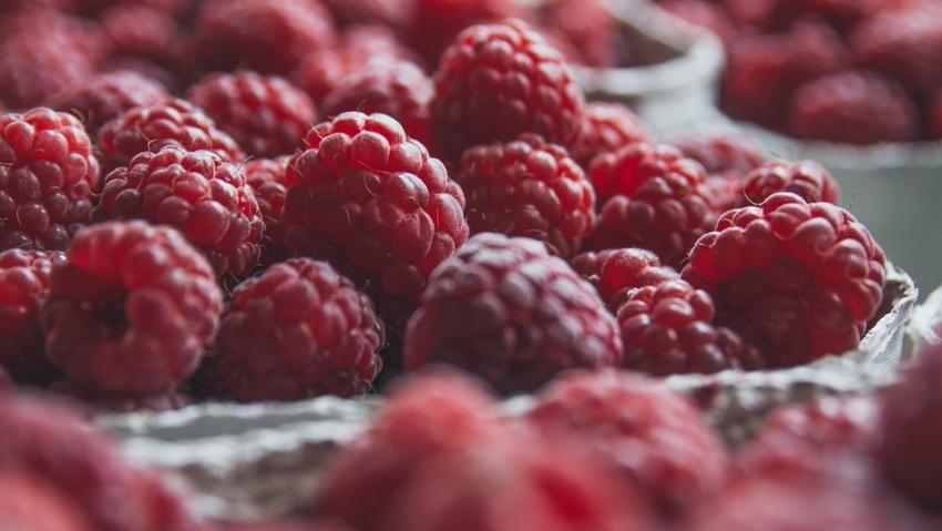 Препятствуют развитию тромбов: названы самые полезные ягоды для сердца