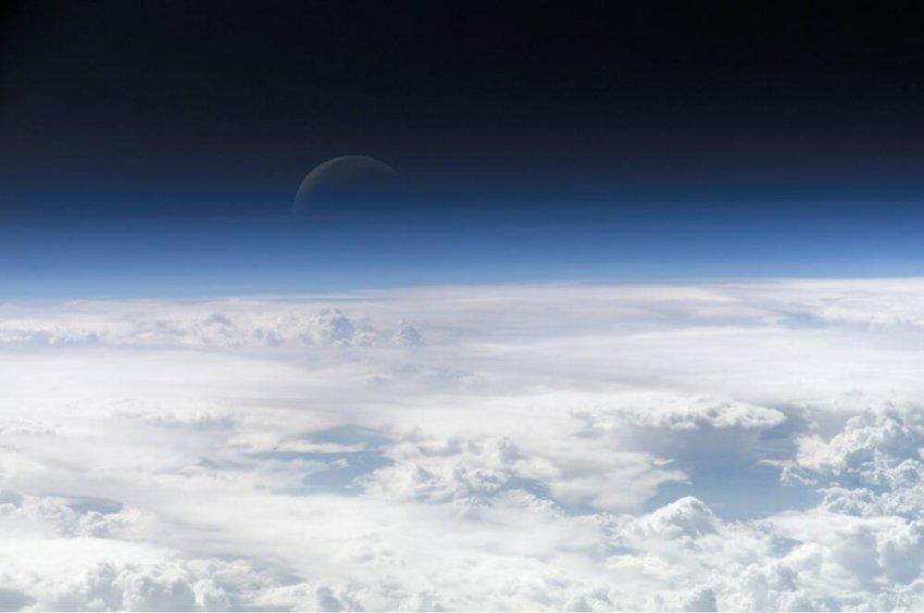 Земля как живой организм! Гипотеза учёного Джеймса Лавлока
