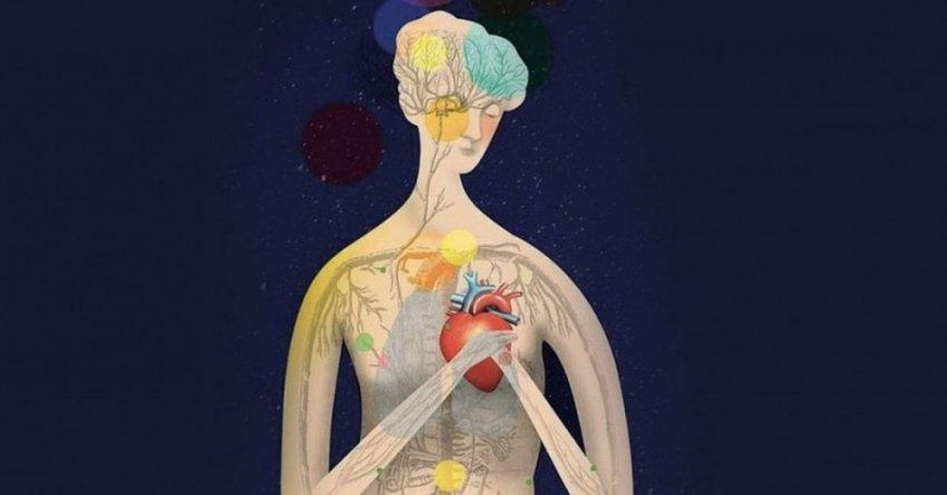 Психосоматика: влияние мысли на тело