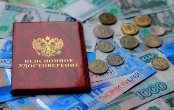 Экономист сравнил пенсионную систему России с цаплей