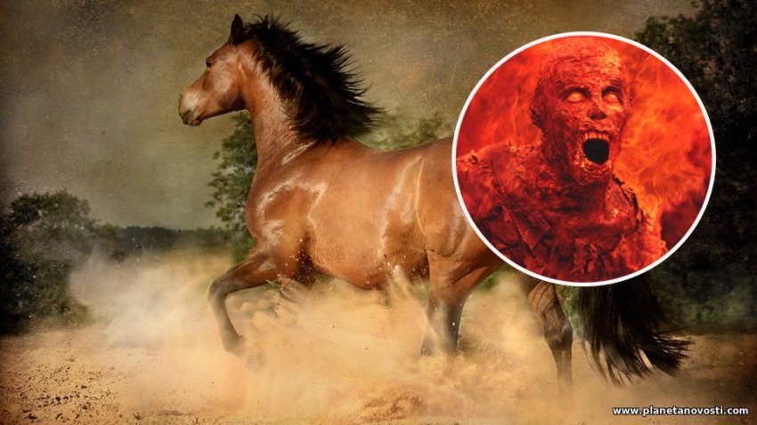 Тесть продал зятю лошадь по завышенной цене и за это попал в Ад