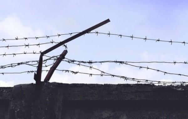 В ЛДПР предложили провести амнистию для заключенных по уголовным статьям