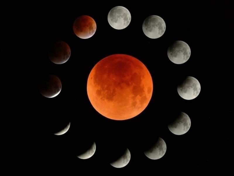 Лунный календарь дачника на 2021 год поможет в составлении графика посадок