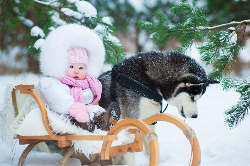 Какие новые законы вступают в силу с 1 февраля 2021 года в России