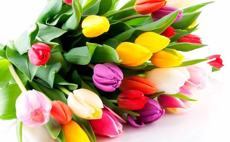 Как поздравить тещу с 8 марта и что ей лучше подарить
