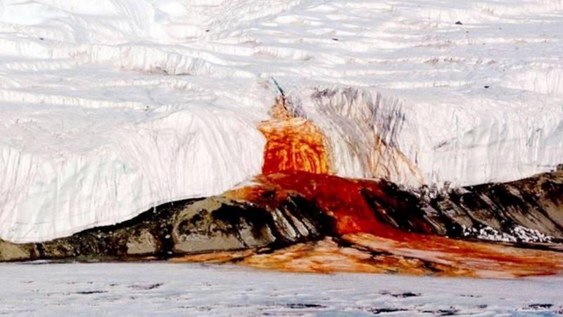 Самые страшные открытия, сделанные в Антарктиде