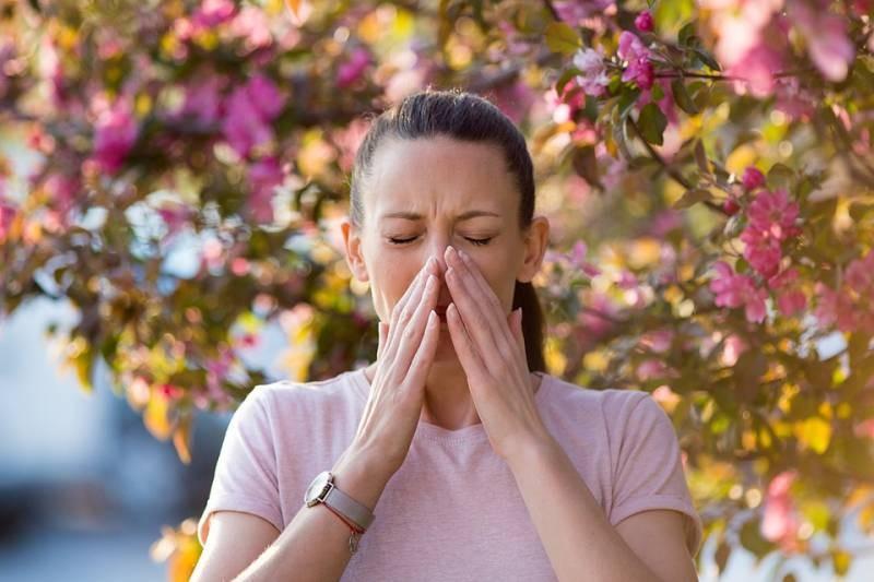 Может ли пыльца с растений увеличить вероятность заболеть коронавирусом