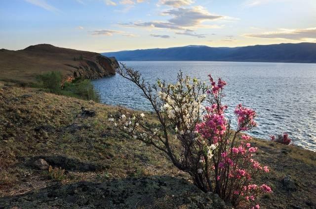 Какая погода ожидается на майские праздники в разных регионах России