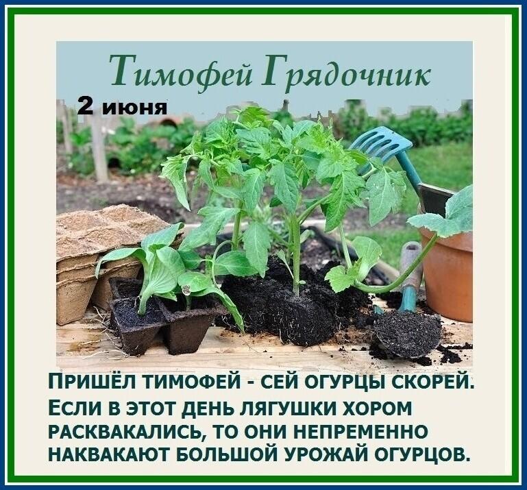 Какие праздники отмечаются 1 и 2 июня в России и в мире