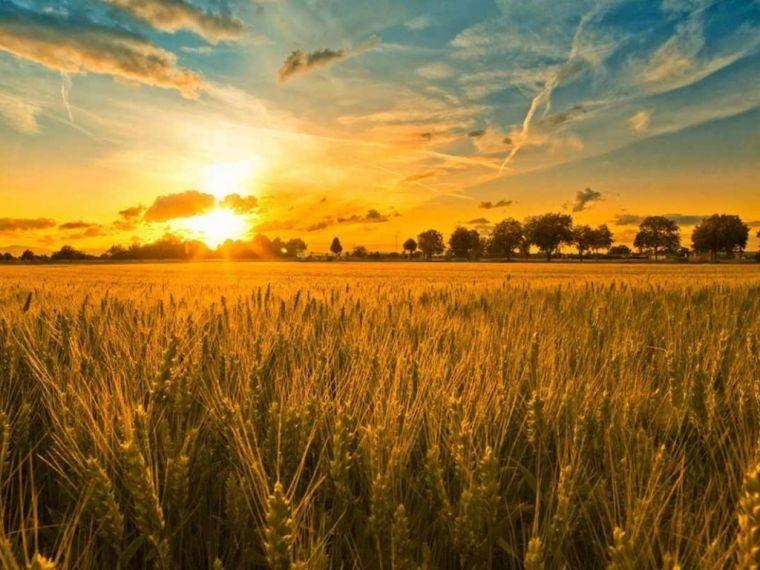 Как загадать желание на день солнцестояния 21 июня 2021