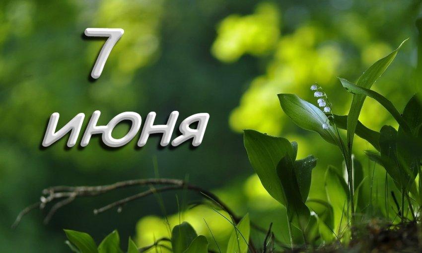 Народные приметы 7 июня, в Иванов день