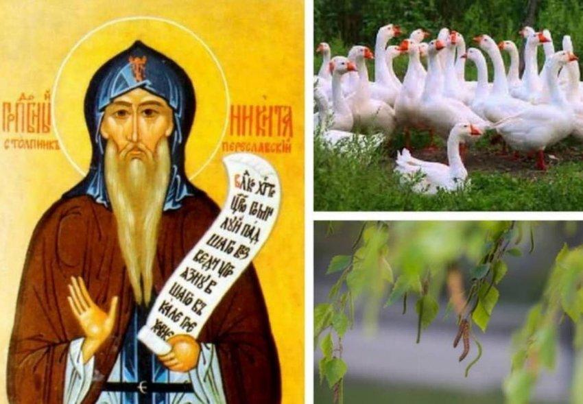 Народные приметы 10 июня, в день Никиты Гусятника