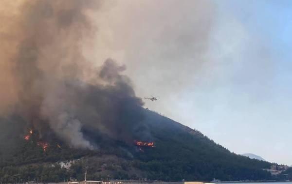 В Турции от лесных пожаров пострадали больше 40 населенных пунктов