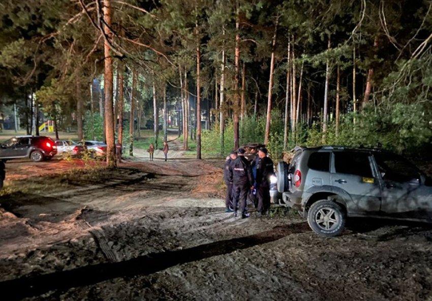 Что случилось в поселке Большое Козино: убийство, поиски, задержание подозреваемого