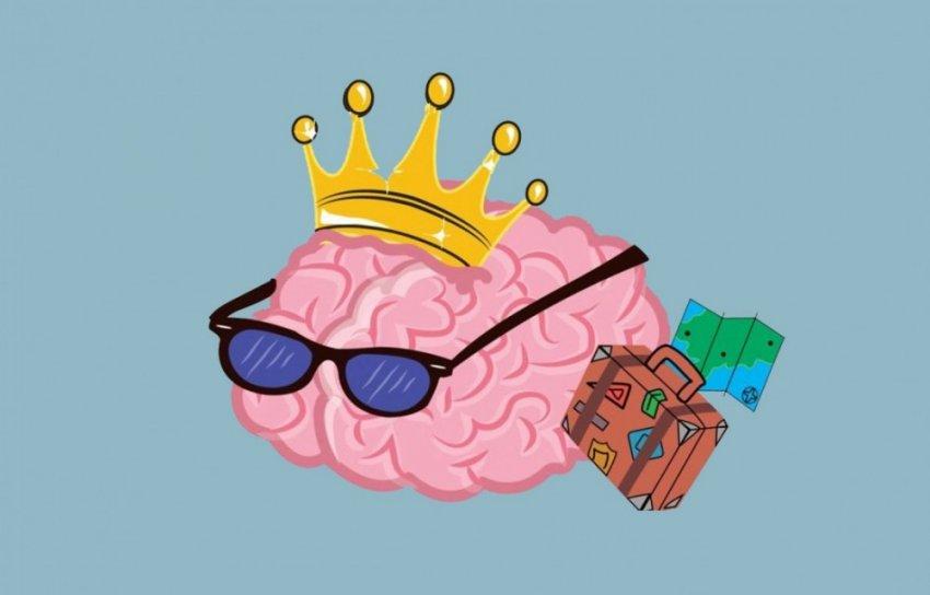 ТОП-14 фактов о работе мозга