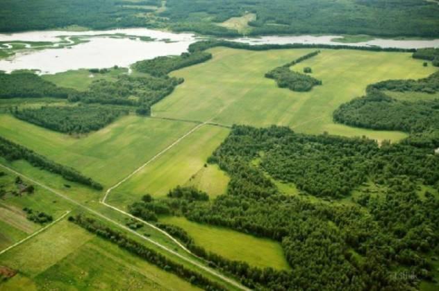 В России приняли новый закон о дальневосточном гектаре