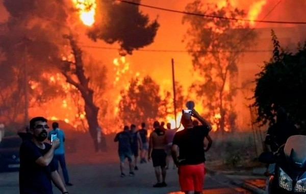 Количество лесных пожаров в Турции существенно сократилось